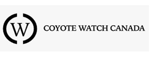 coyote-watch-canada