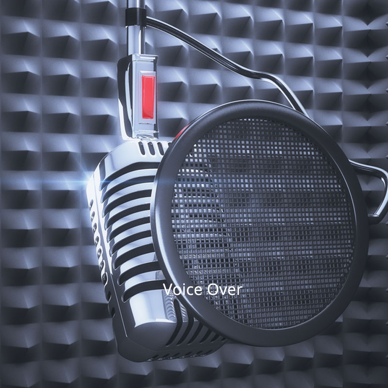 voice-over-packages